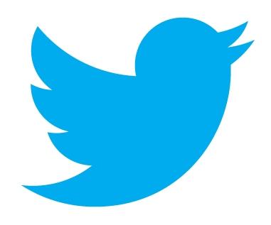 twitter_new_logo_20120607_1310_0072[1]